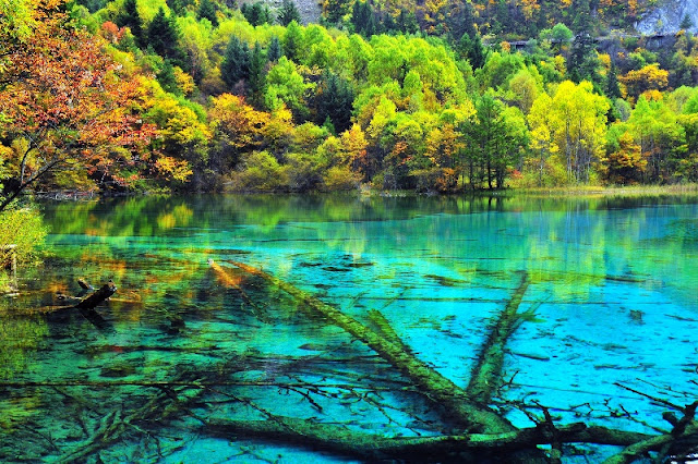 Five Flower Lake China Most Beautiful Lakes in the World Adventure Travel