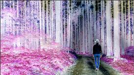 Cara membuat efek warna terbalik di photoshop