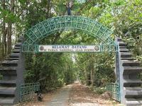 Demi Wisatawan, Taman Nasional Alas Purwo Yang Sempat Tutup Dibuka Kembali