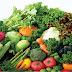 Thực đơn giảm cân an toàn khoa học - Giảm 3 đến 4 kg mỗi ngày