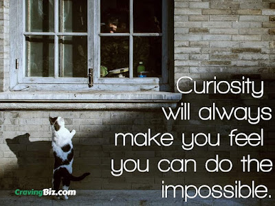 Curiosity will always make you feel you can do the impossible.