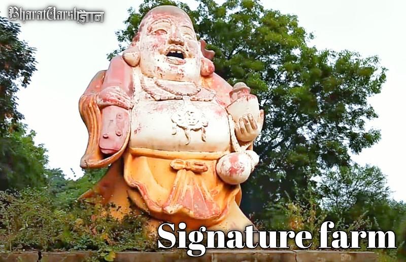 signature farm