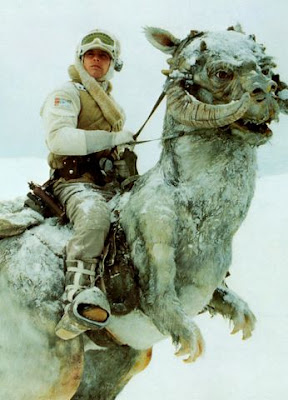 Tauntaun from Star Wars V: Empire Strikes Back