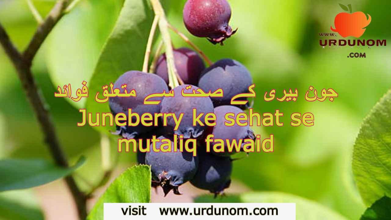 Juneberry ke sehat se mutaliq fawaid