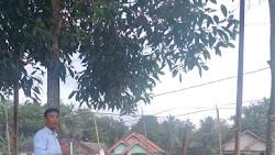 Ini Alasan Martono Ikut Gotong-royong  Pembangunan Lapangan Bola Volly di Kampung Setia Negara