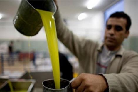 """المضاربة ترفع أسعار زيت الزيتون إلى """"مستويات قياسية"""" بالمغرب"""