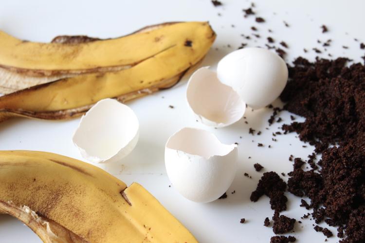 lannoite banaaninkuorista, kahvista ja kananmunista