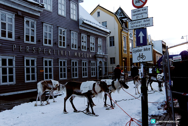 bowdywanders.com Singapore Travel Blog Philippines Photo :: Norway :: 10 Stunning Reasons to Visit Tromsø During the Winter Breaks
