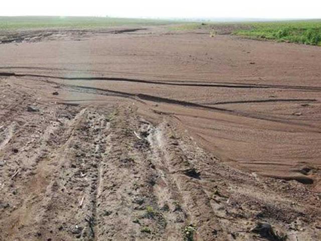 Người Nhật thường xử lý đất thật tốt trước khi trồng trọt