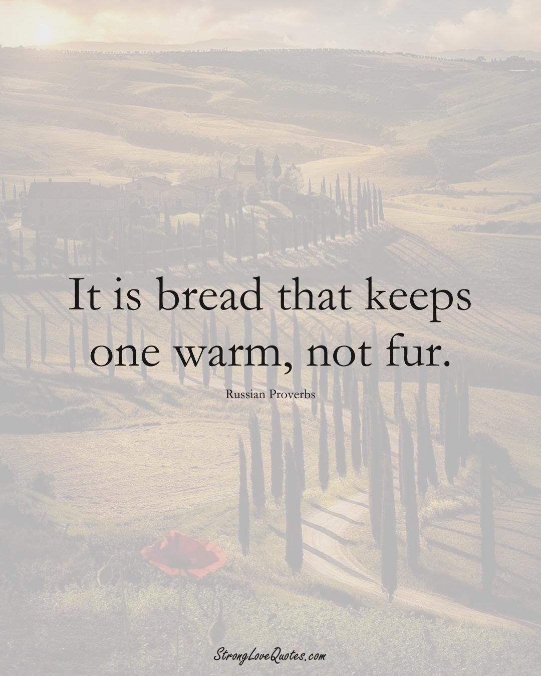 It is bread that keeps one warm, not fur. (Russian Sayings);  #AsianSayings