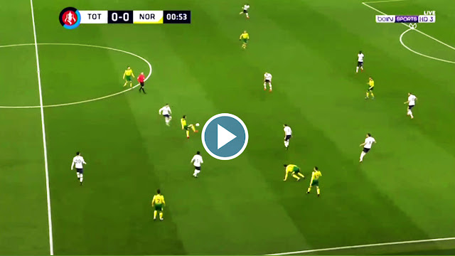 Tottenham vs Norwich City Live Score