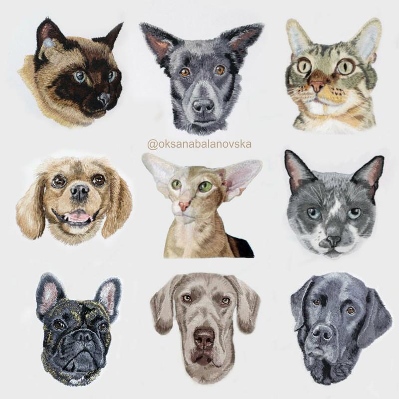 Bordados realistas de animais de estimação