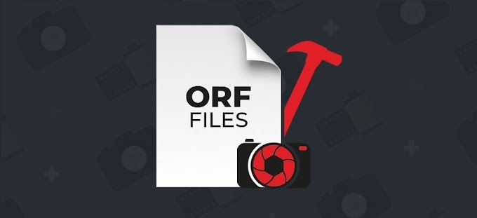 How to Recover Deleted ORF Files from Olympus Camera