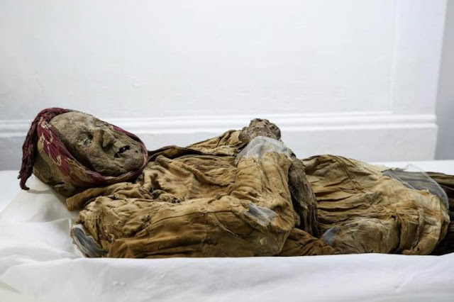 Ecuadorian mummy may hold clues to spread of rare malady