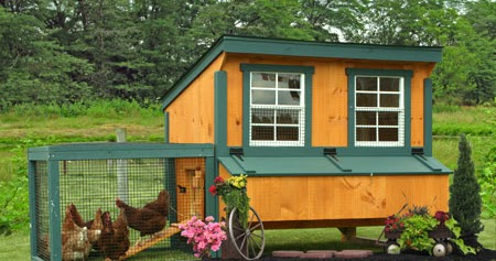 Portable Chicken Coops And Runs For Sale From Sheds Unlimited