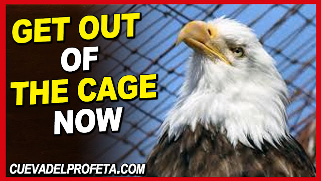 Get out of the cage now - William Marrion Branham Quotes