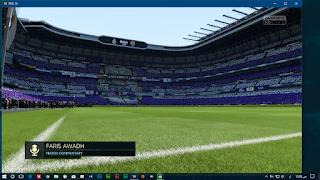 FIFA 18 3D Grass fix