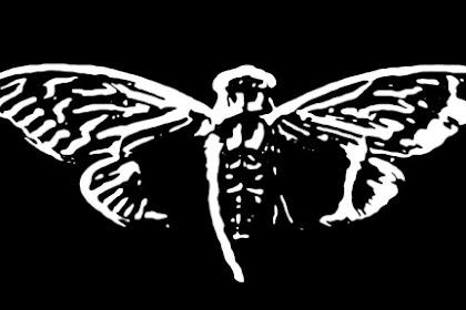 Cicada 3301 Misteri