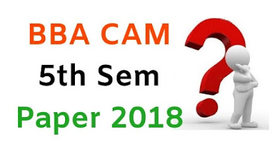 BBA (CAM) 5th Sem Question Papers 2018 Mdu (Maharshi Dayanand University)
