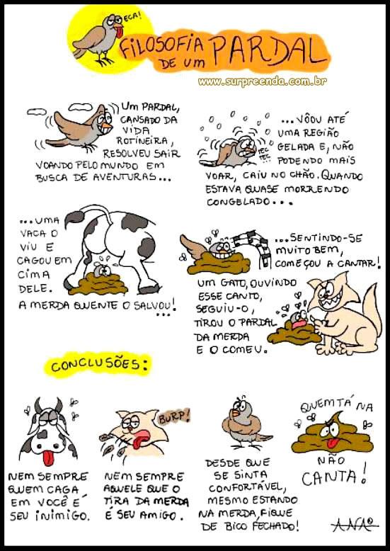filosofia de um pardal