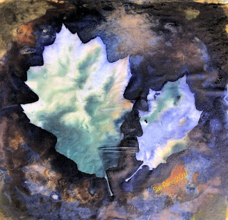 Wet cyanotype_Sue Reno_image 836