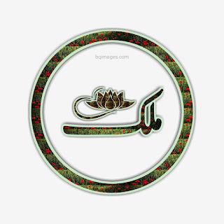 Malik Name DP in Urdu