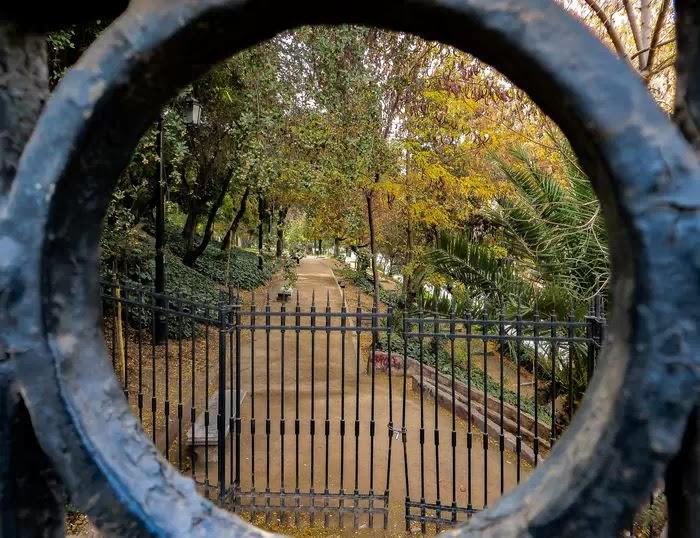 Фотография парка видна через круглую часть ворот