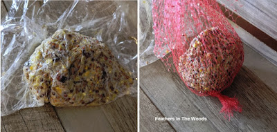 Suet ball recipe for birds in winter