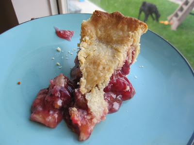 homemade gooseberry pie