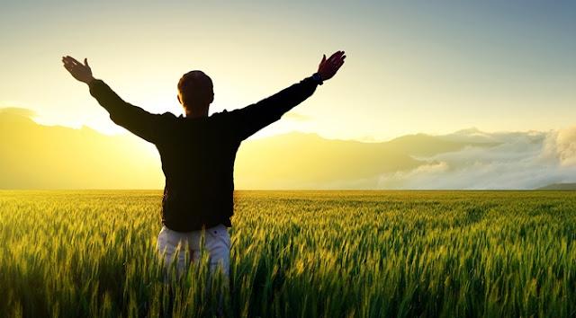 Seu Bem-Estar é a Base a partir da qual Você irá Criar - Mensagem Diária do Arcanjo Gabriel