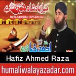 http://www.nohaypk.com/2015/10/hafiz-ahmed-raza-qadri-muharram-special.html