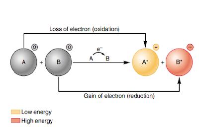 reaksi redoks, reaksi reduksi, reaksi oksidasi