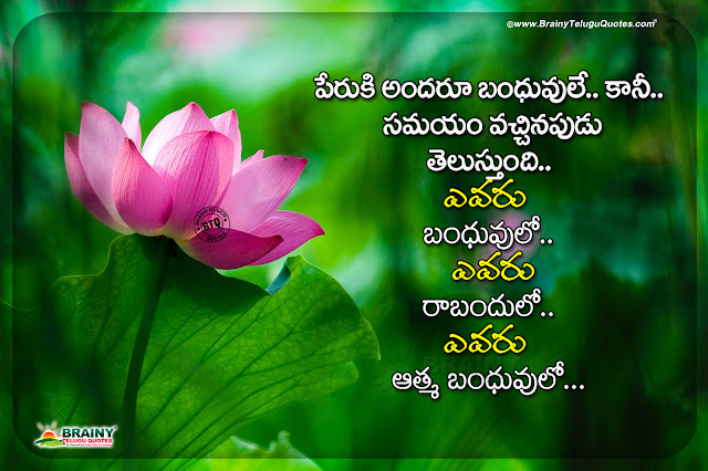 life quotes in telugu, telugu messages, heart touching life quotes, famous telugu quotes, words on life in telugu, best quotes on life in telugu