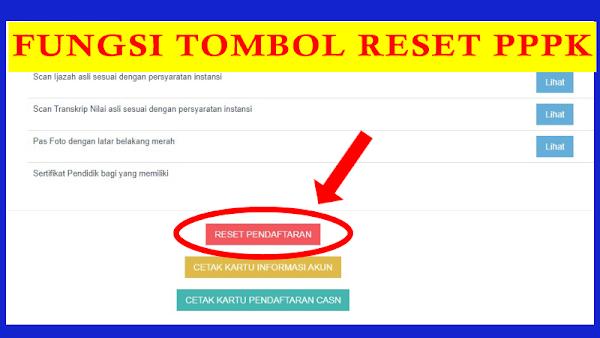 Manfaat Tombol Reset Pendaftaran SSCASN PPPK 2021