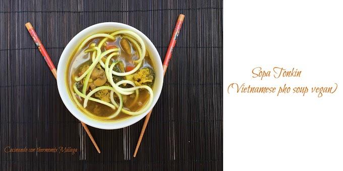 Sopa tonkin (vietnamese pho soup vegan)