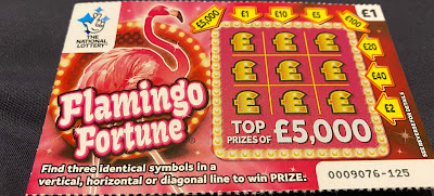 £1 Flamingo Fortune