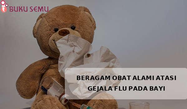 Ini Dia Beragam Obat Alami Atasi Gejala Flu Pada Bayi, bukusemu