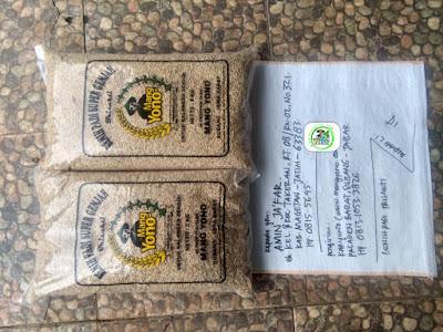 Benih padi yang dibeli AMIN JAFAR Magetan, Jatim. (Sebelum packing karung ).
