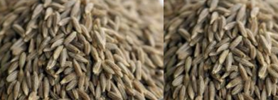 Cumin Seeds / Jeera acts as a Treatment of Dandruff