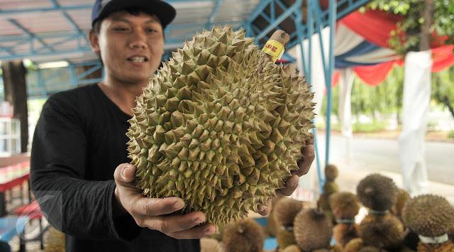Pusat Durian Jakarta