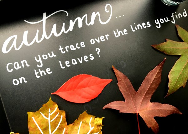 Autumn Leaf Lines with Chalk