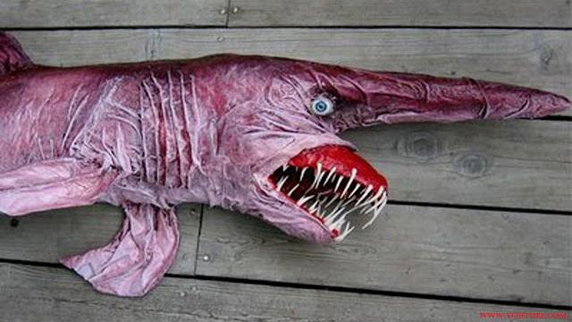 Goblin Shrak Adalah Jenis Ikan Laut Dalam Paling Menyeramkan, Predator Dan Unik