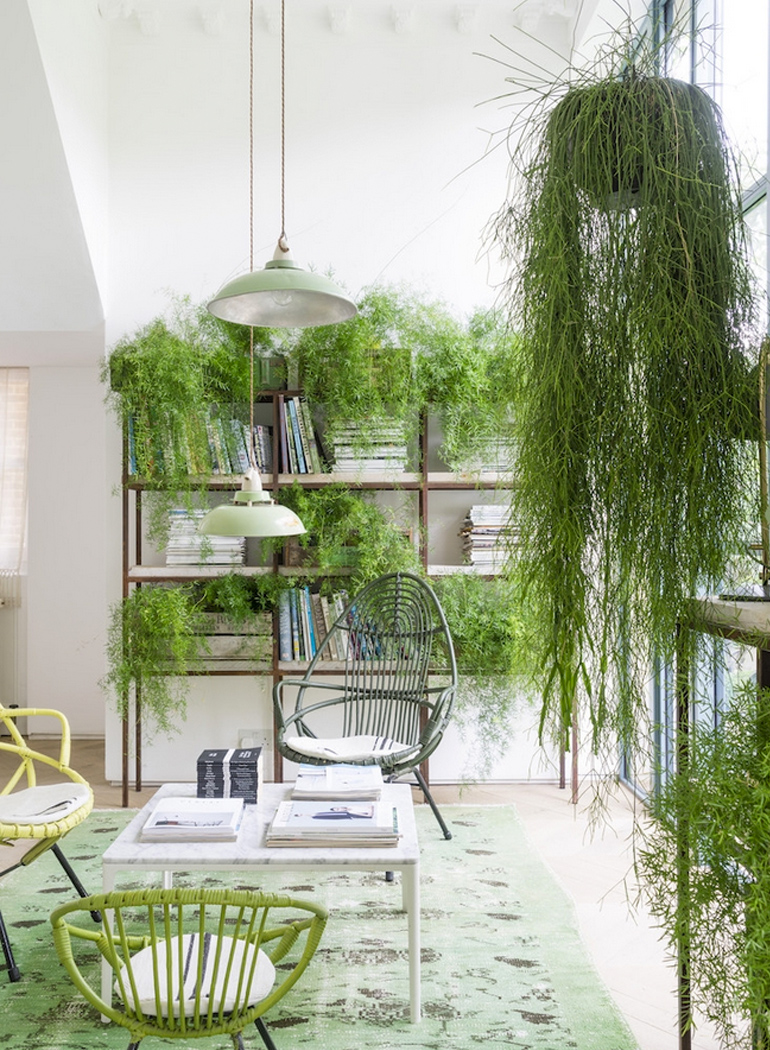 inspiracion-greenery-pantone-plantas-urban-jungle