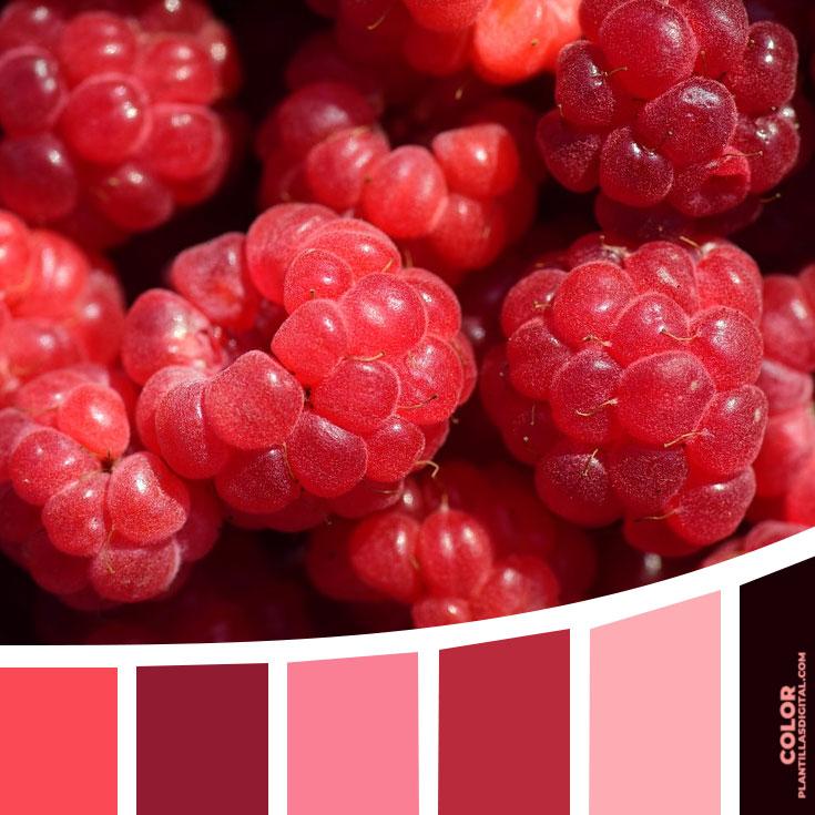 color_576