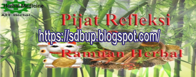 obat herbal dari buah dan sayur