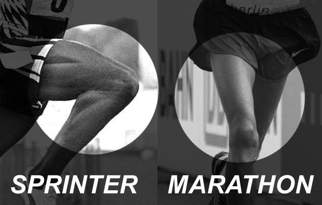 ciało sprintera i maratończyka