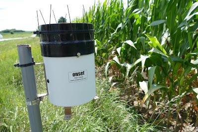 rain climate wet weather minnesota corn farm nitrogen fertilizer