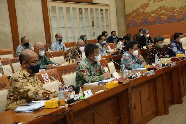 Laporkan Realisasi Anggaran 2021, BP Batam Hadiri RDP bersama Komisi VI DPR RI