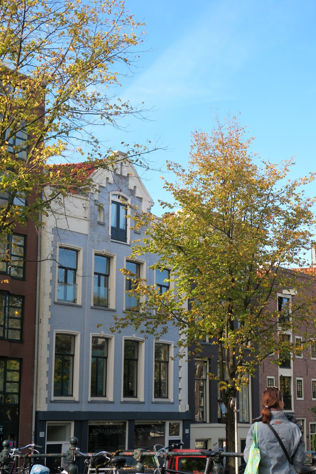 Amsterdam blue canal house and autumn tree