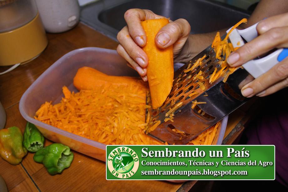 rallando zanahoria